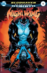 nightwing12