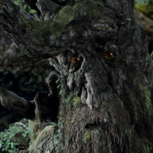 Tree People List 07