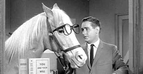 Horse List 04